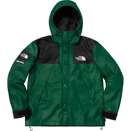 Supreme®/The North Face® Leather Mountain Parka (Dark Green)