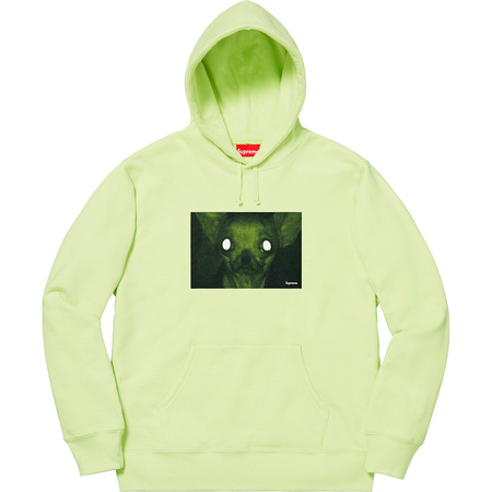 Chris Cunningham Chihuahua Hooded Sweatshirt (Pale Mint)